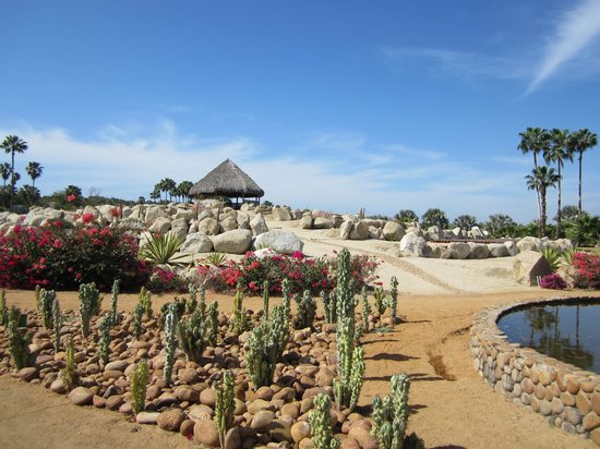 Royal Solaris Los Cabos: Botanical gardens a must