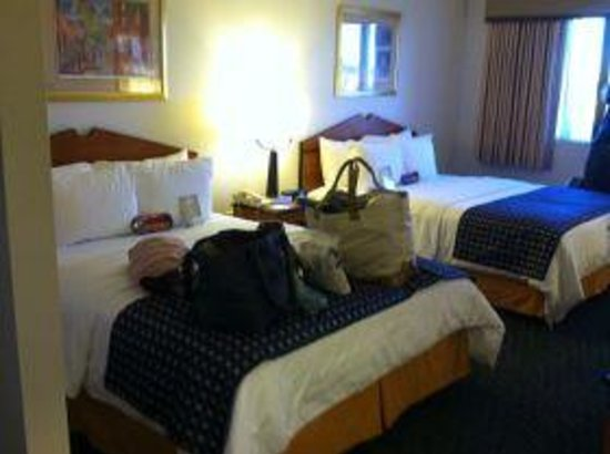 Comfort Inn &amp; Suites Boston Logan International Airport: a real picture of the room not staged but yet PERFECT!!!