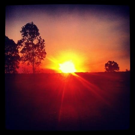 Spicers Vineyards Estate: Magic sunset