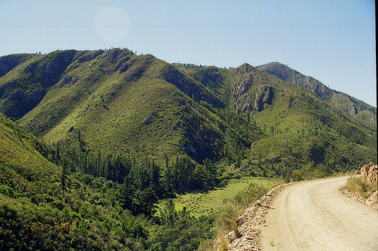 Prince Alfred Pass (R339)