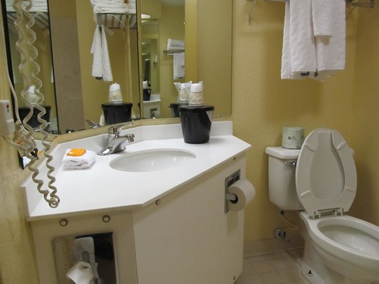 La Quinta Inn & Suites Myrtle Beach at 48th Avenue: Bathroom counter top with little room for needed items.