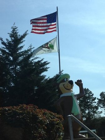 Yogi Bear Jellystone Park and Resort: Entrance