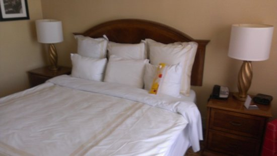 Bethesda Marriott: Bed 1