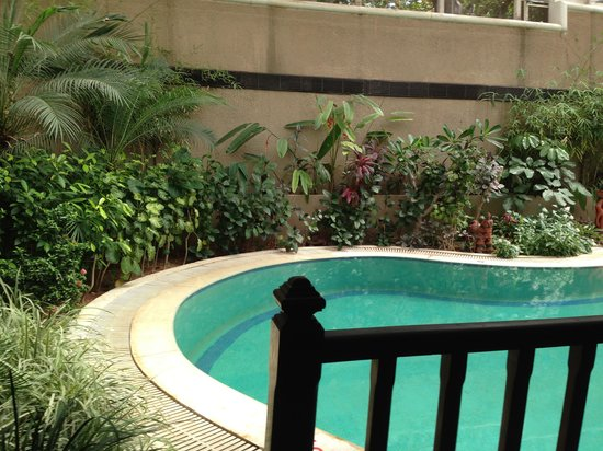 Leonia Holistic Destination: The private swimming pool