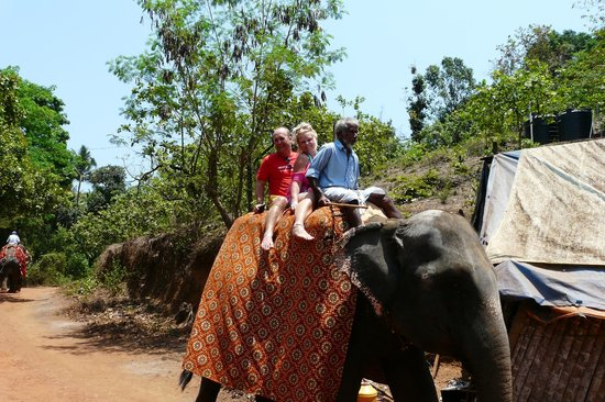 Lui Beach Resort: Elephant Ride