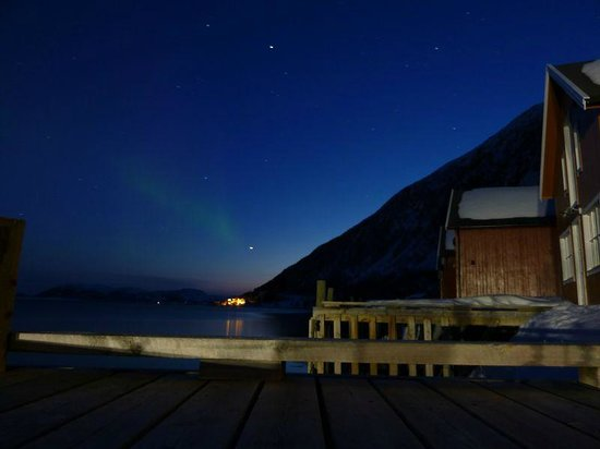Troms, Norge: View of the Northern Lights from the cabin!