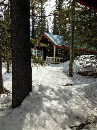 Storm Mountain Lodge &amp; Cabins: cabin