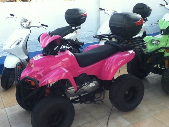 Gaia Garden: rented quad bike