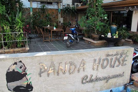 Photo of Panda Guesthouse Chiang Mai
