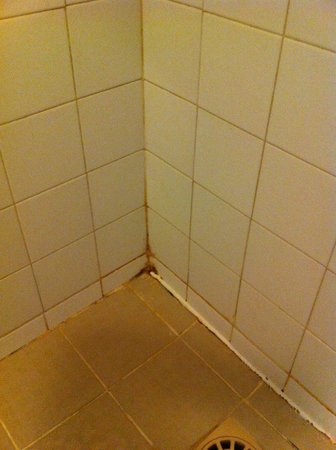 Appart'City Paris La Villette: Corner in bathroom with rust