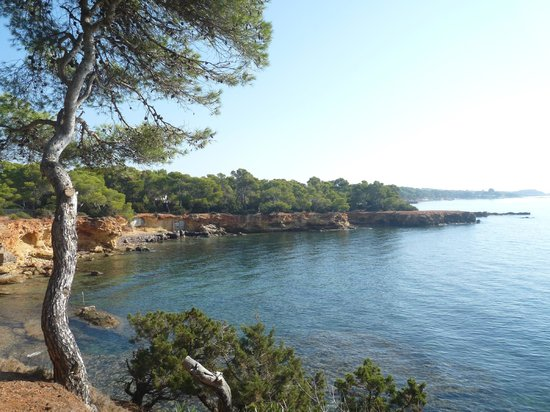 Caribe Ibiza Hotel: On the walk to Santa Eululia