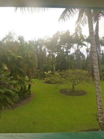 Hale Moana Bed & Breakfast: Main room view ~ So peaceful to wake up to!