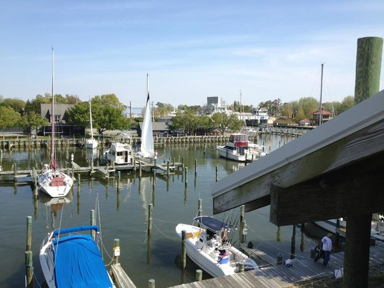 Tilghman, MD: Knapp's Narrow Marina