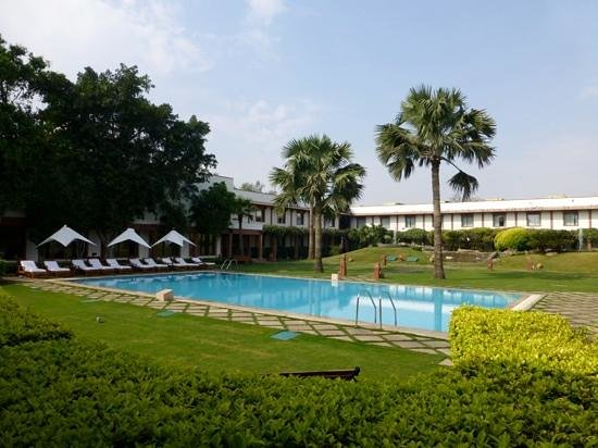 Trident, Agra : the lovely pool - (during the pigeons lunch break!£