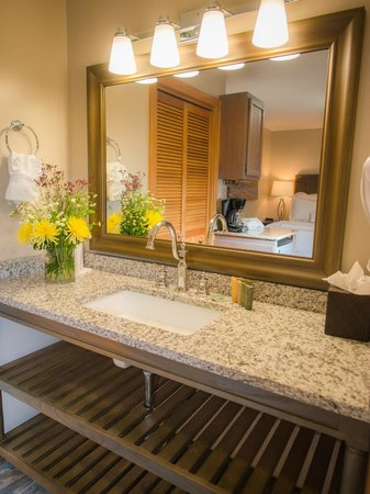 Park Plaza Resort: Studios aka Queen Suites or Efficiency studios new granite counters and lighting