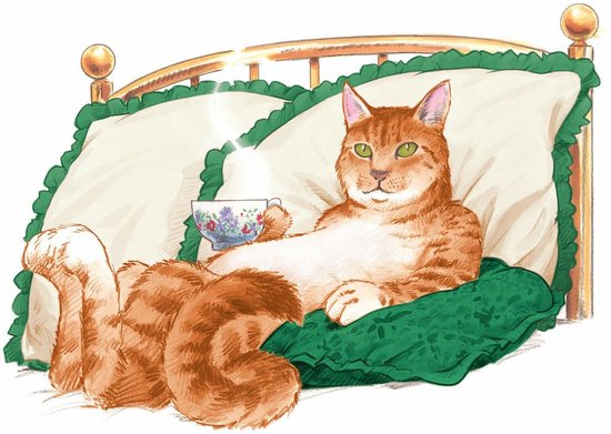 The Marmalade Cat Bed & Breakfast: The Marmalade Cat