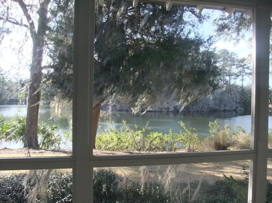 Inn at Palmetto Bluff, An Auberge Resort: View from Back porch. Birds are nesting in the island.