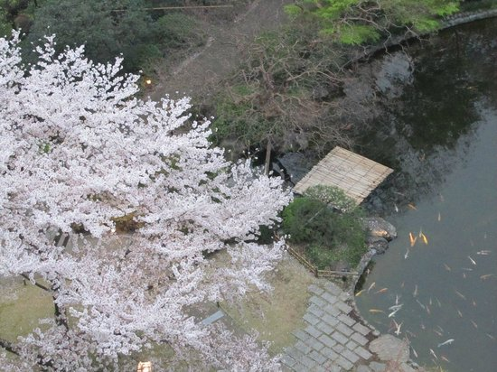 Grand Prince Hotel Takanawa: View of Koi pond from room