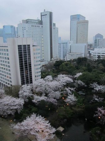 Grand Prince Hotel Takanawa: View from room during the day