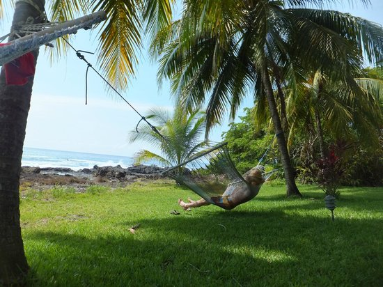 Hotel Amor de Mar: Hammock by the ocean