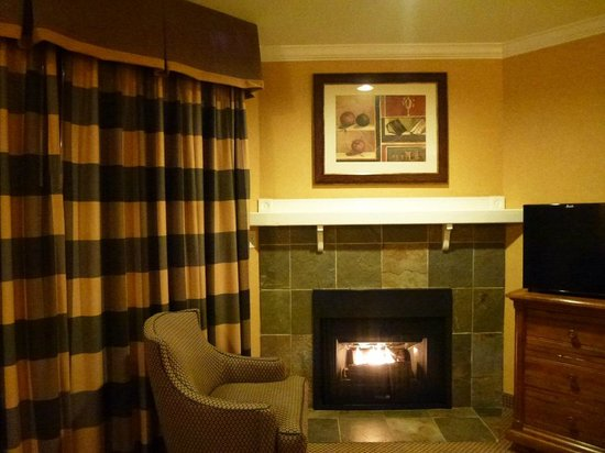 BEST WESTERN PLUS Fireside Inn on Moonstone Beach : Cozy fireplace in the room 