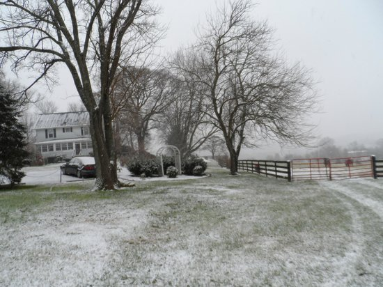 Black Horse Inn: Winter wonderland