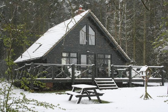 Open Season Lodge