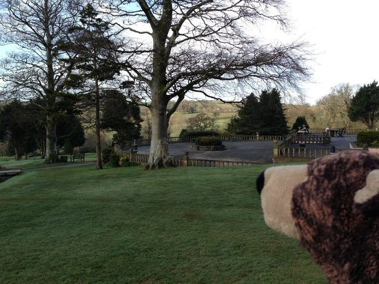 Elfordleigh Hotel: View of the hotel's terrace(with teddybear..)
