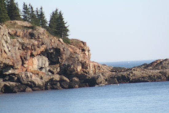 Bar Harbor Inn: Acadia National Park 6