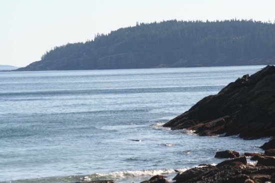 Bar Harbor Inn : Acadia National Park7