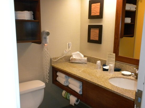 Comfort Inn & Suites North Conway: The bathroom
