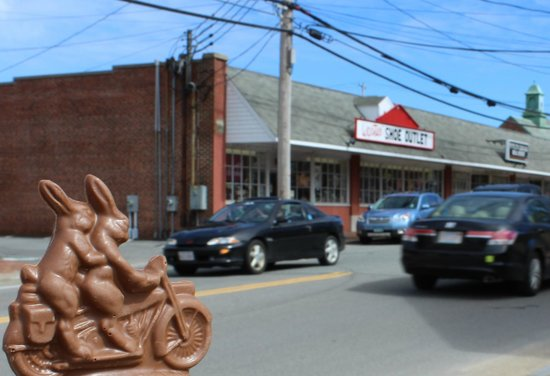 Orleans, MA: motorcycle bunny