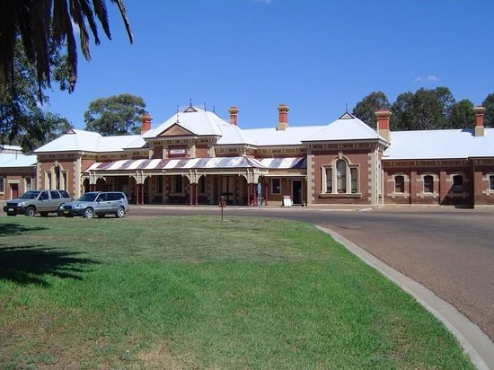 Mudgee Tourist And Van Resort
