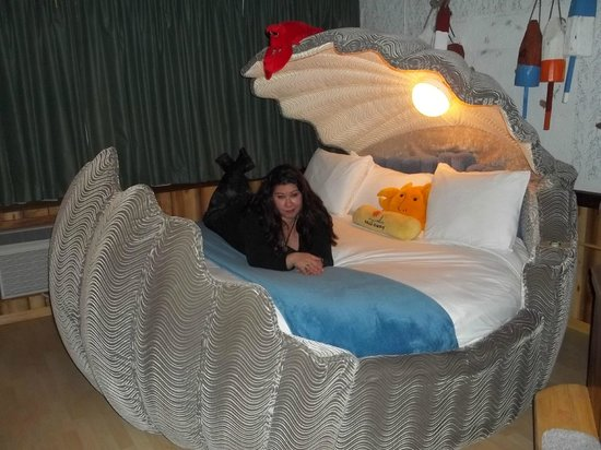 Adventure Suites: giant Clam bed