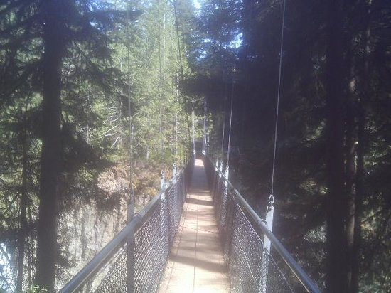 Oregon Coast, OR: Suspension bridge