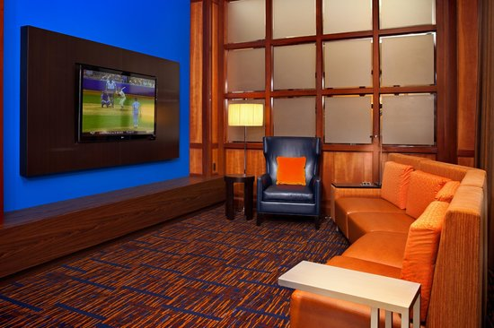 Courtyard by Marriott Baltimore Downtown / Inner Harbor: Home Theatre Area
