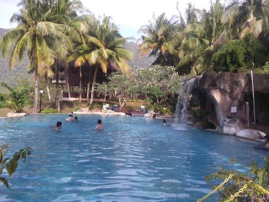 Damai Beach Resort: Treetop pool