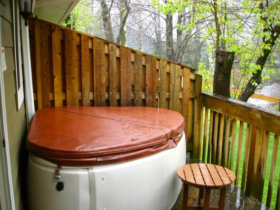 Village Inn of Blowing Rock : 2 person hot tub