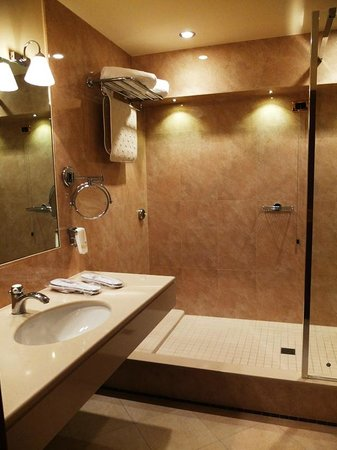 Accademia Hotel: Bathroom w/ shower