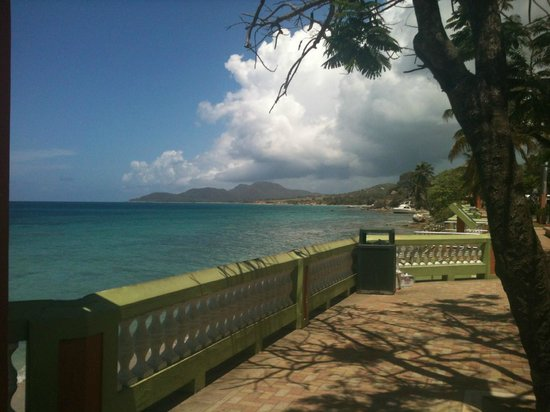 Photo of Flamboyan Isla de Vieques