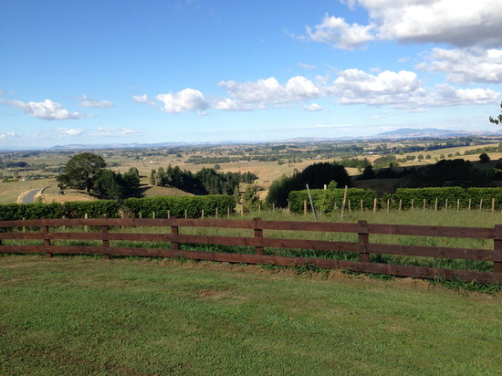 Te Awamutu, Selandia Baru: Beautiful Views!