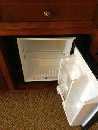 The Lodge at Woodloch: mini fridge in your room. great to store snacks or drinks