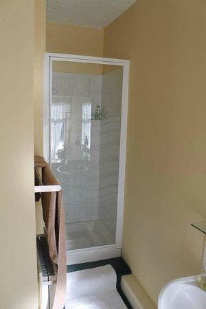 Wortley Cottage Guest House: Back Double - Shower Room