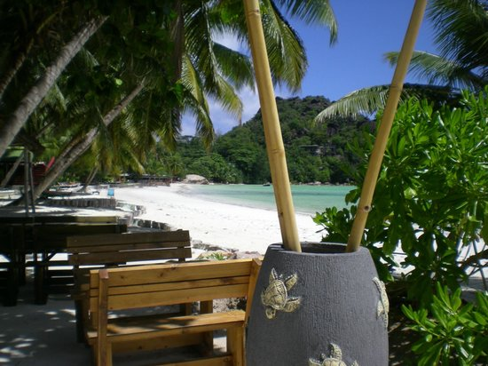 Le Duc de Praslin: La plage aux abords du caf des arts