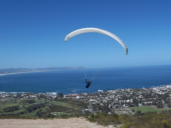 Hermanus Lodge on the Green: Paragliding over Hermanus
