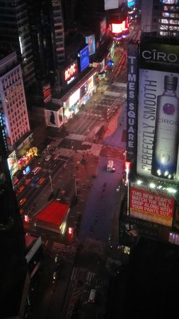 Crowne Plaza Times Square Manhattan: Great View!