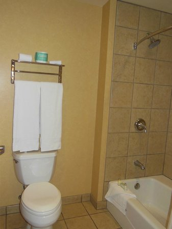 South Point Hotel, Casino and Spa: separate from the sink area by a door but no fan to exhaust the odors..