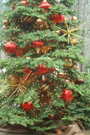 Salish Lodge & Spa: Holiday Decor