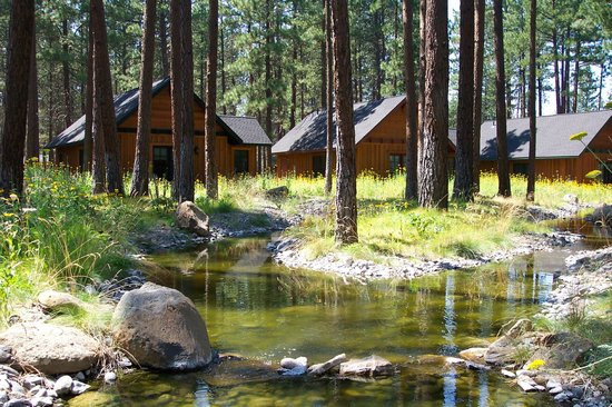 Five Pine Lodge &amp; Spa: Cabins