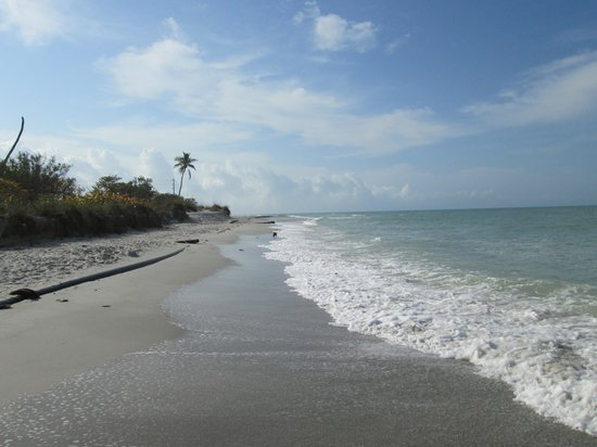 Castaways Beach and Bay Cottages: The beach at Sanibel